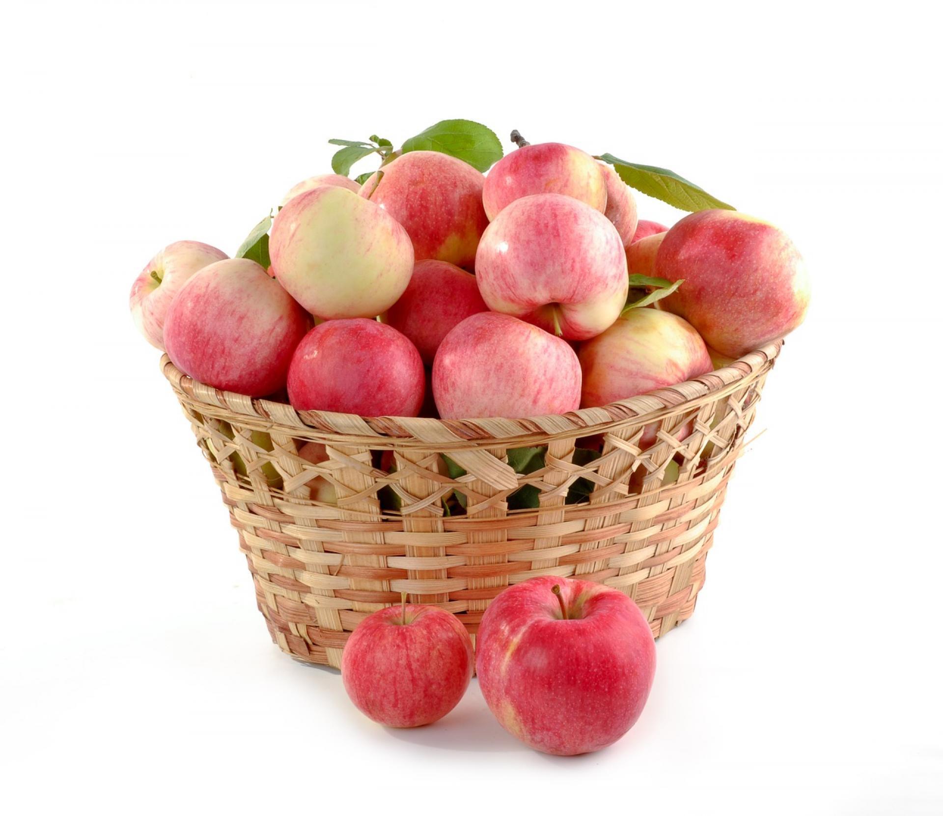 Ovoce Fruwe je vždy čerstvé
